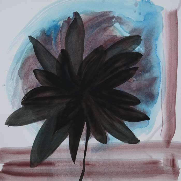Kasvi ja sen tietoisuus